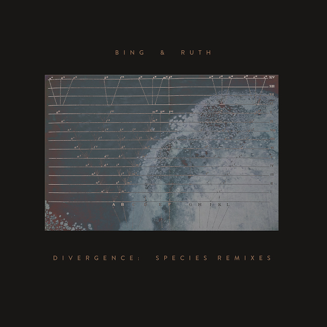 Divergence: Species Remixes EP